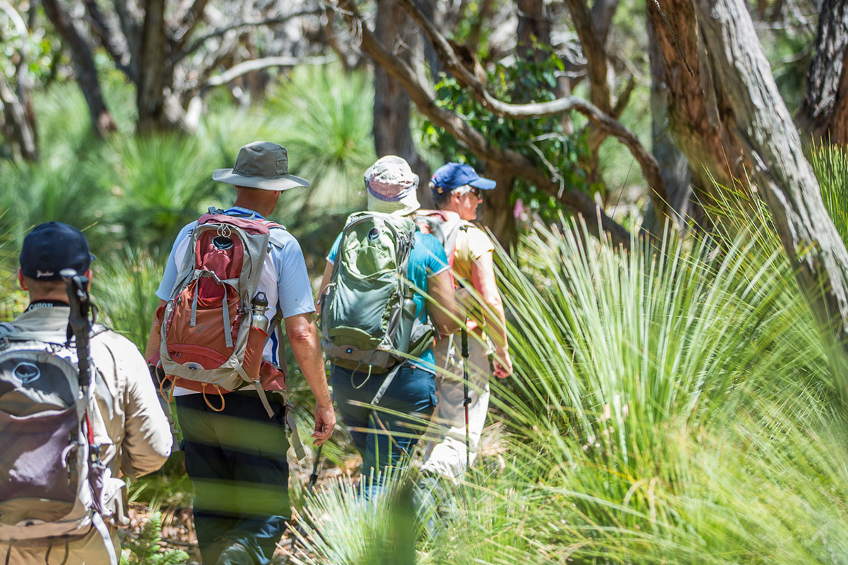 Enjoy a guided walking experience with Great Walks of Australia on the Twelve Apostles Lodge Walk in Victoria.