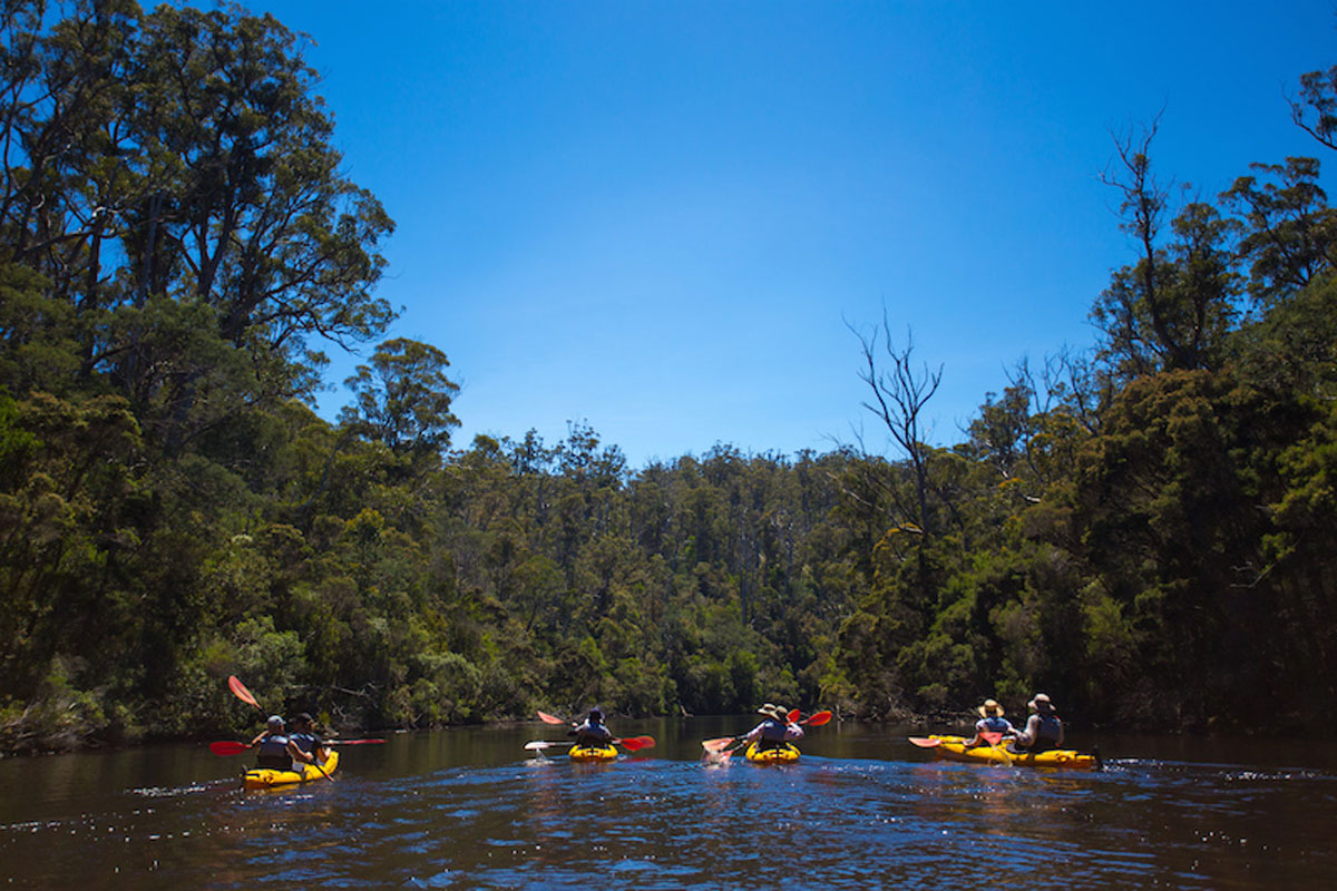Enjoy kayaking down the Ansons River in Tasmania on the Bay of Fires Lodge Walk.