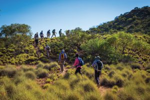 Hike along ridgelines on the Larapinta Trail in the Northern Territory.
