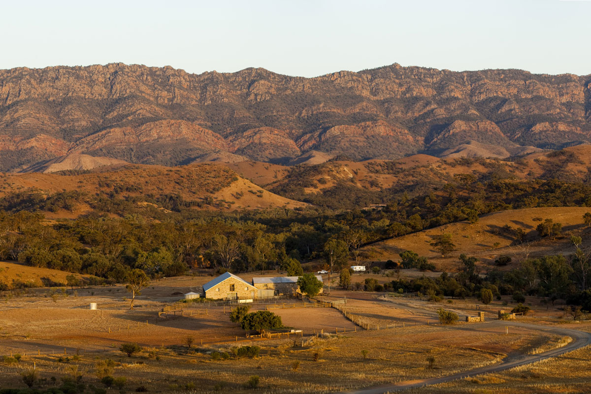 Experience the unique Elder Ranges of South Australia on the Arkaba Walk with Great Walks of Australia.