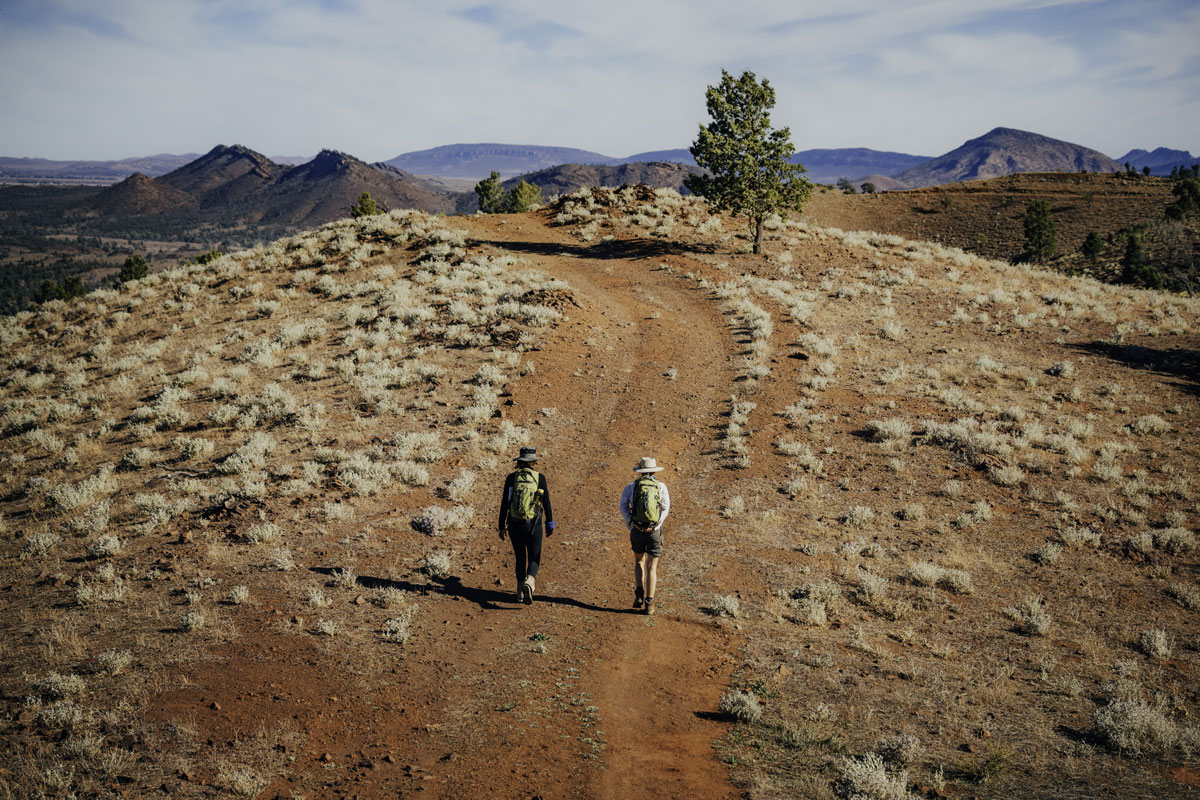 Trail on the Arkaba Walk