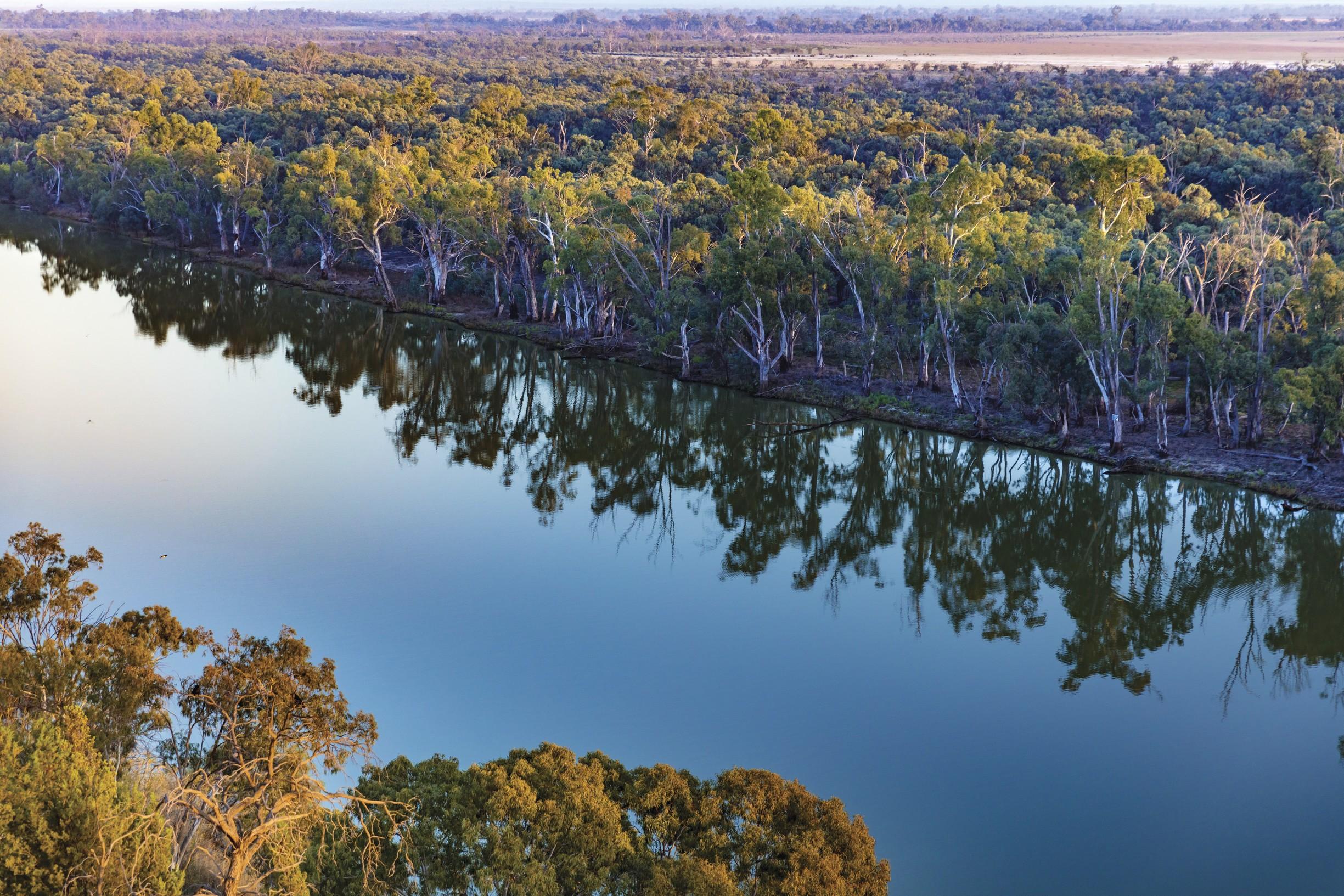 Murray River Walk