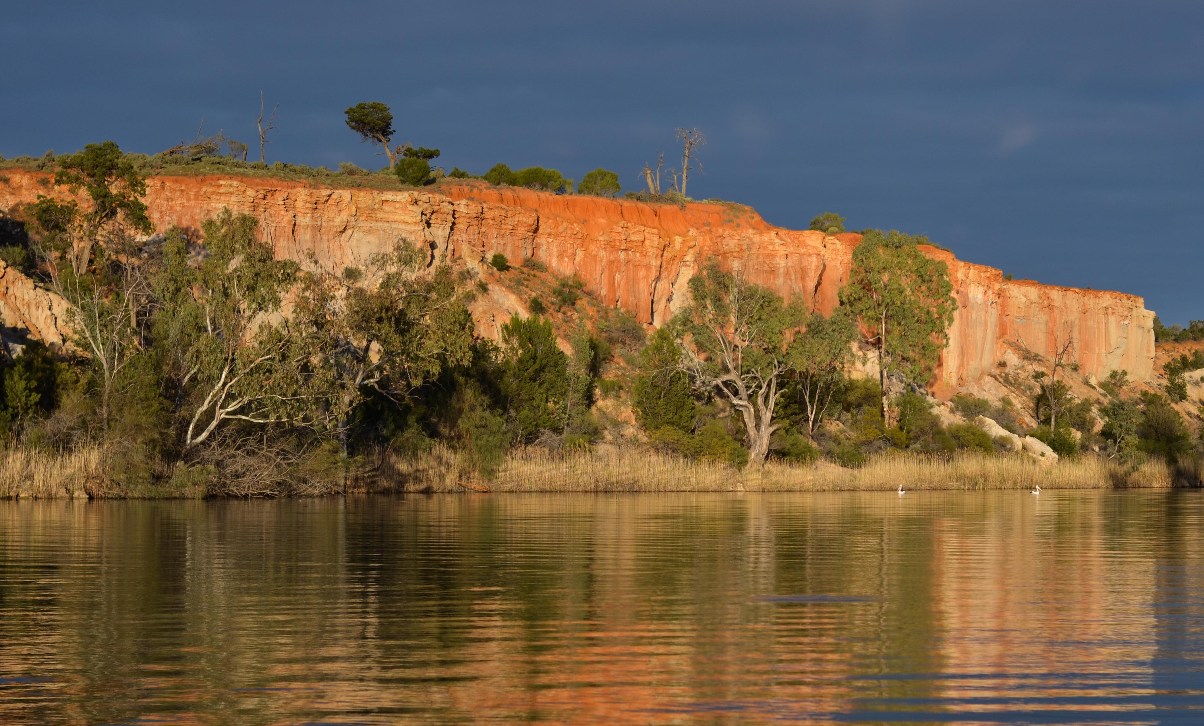 Sunrise on the Murray River Walk