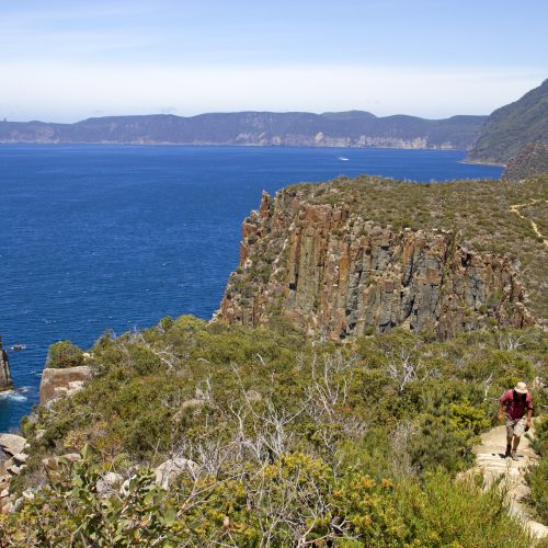 Ocean views from the cliffs on the Three Capes Walk